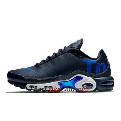 nike air max bleu tn