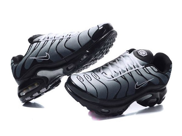 nike tn requin grise